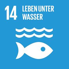 SDG 14: Ozeane, Meere und Meeresressourcen im Sinne nachhaltiger Entwicklung erhalten und nachhaltig nutzen